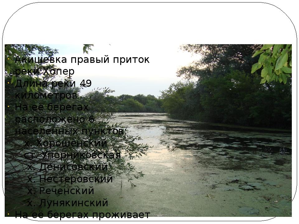 Наша речка Акишевка Акишевка правый приток реки Хопер Длина реки 49 километр...
