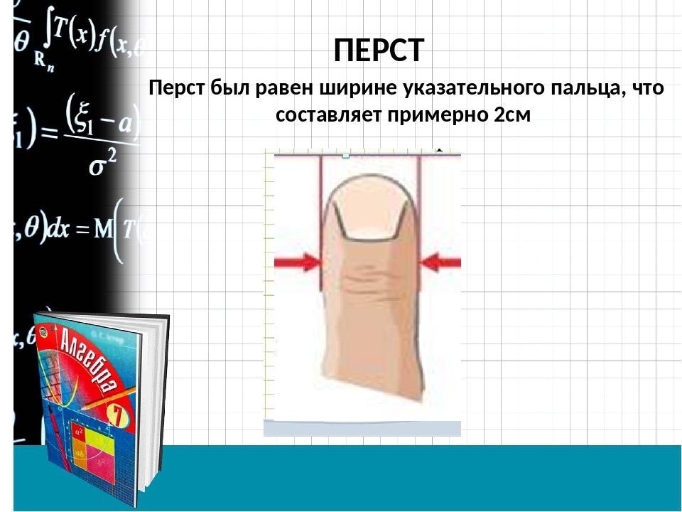ПЕРСТ Перст был равен ширине указательного пальца, что составляет примерно 2см