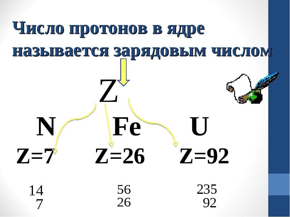 Число протонов в ядре называется зарядовым числом Z N Fe U Z=7 Z=26 Z=92