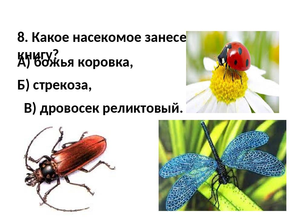 8. Какое насекомое занесено в Красную книгу? А) божья коровка, Б) стрекоза,...