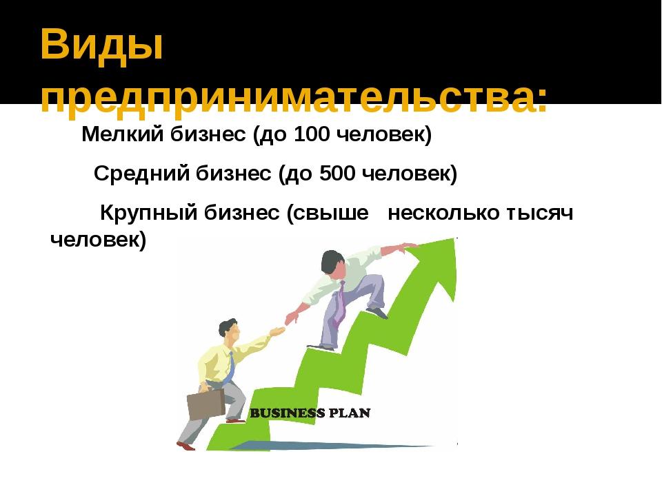 Виды предпринимательства: Мелкий бизнес (до 100 человек) Средний бизнес (до 5...