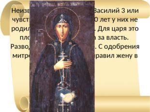 Неизвестно, любил жену Василий 3 или чувства охладели. Но за 20 лет у них не