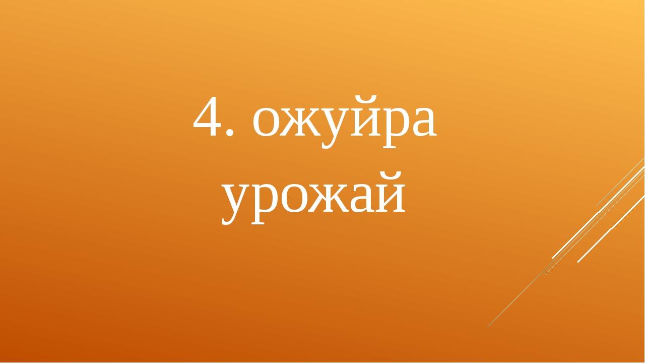 4. ожуйра урожай