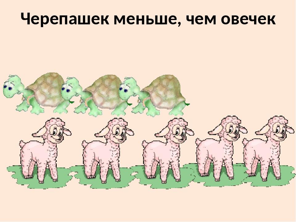 Черепашек меньше, чем овечек