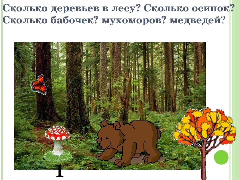 Сколько деревьев в лесу? Сколько осинок? Сколько бабочек? мухоморов? медведей...
