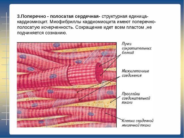 Создана мышечная ткань, реагирующая на нервные импульсы 62