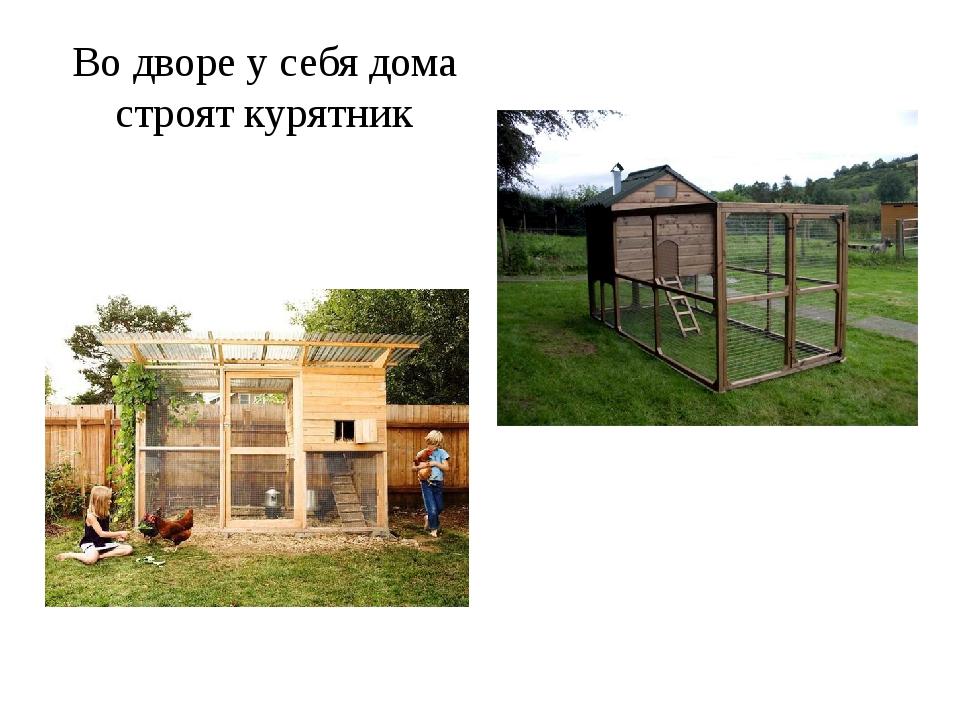 Во дворе у себя дома строят курятник
