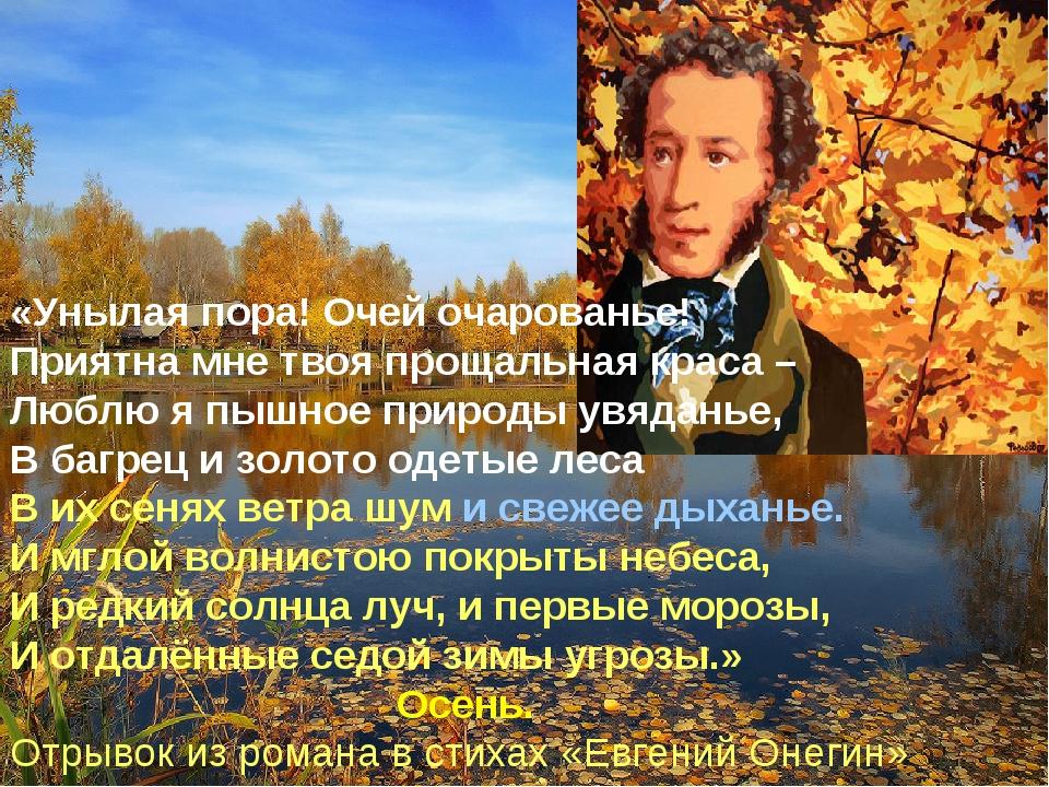 нами пушкин унылая пора очей очарование картинки конечно, обязательно хранить