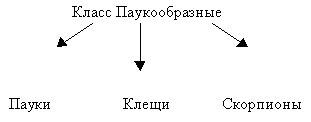 hello_html_4436d72e.jpg