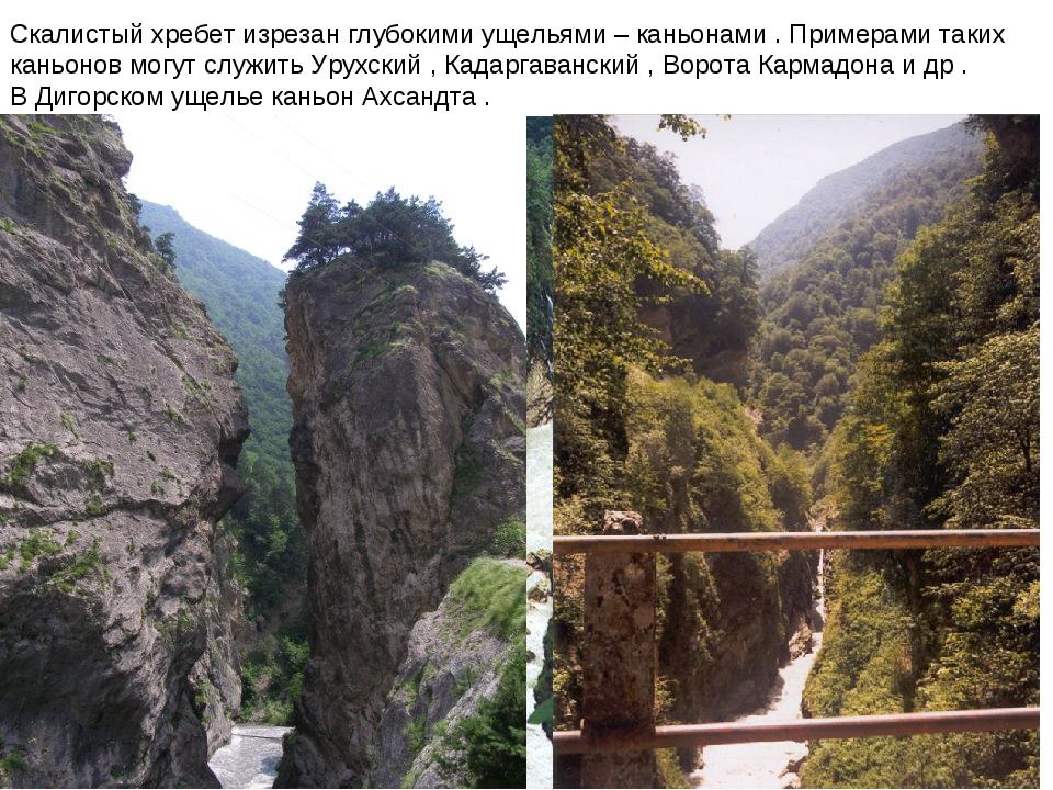 Скалистый хребет изрезан глубокими ущельями – каньонами . Примерами таких кан...