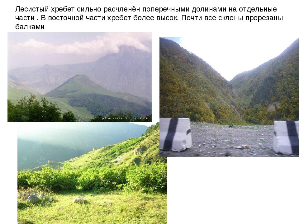 Лесистый хребет сильно расчленён поперечными долинами на отдельные части . В...