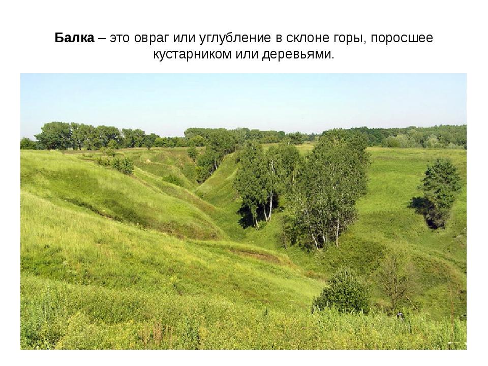 Балка – это овраг или углубление в склоне горы, поросшее кустарником или дере...