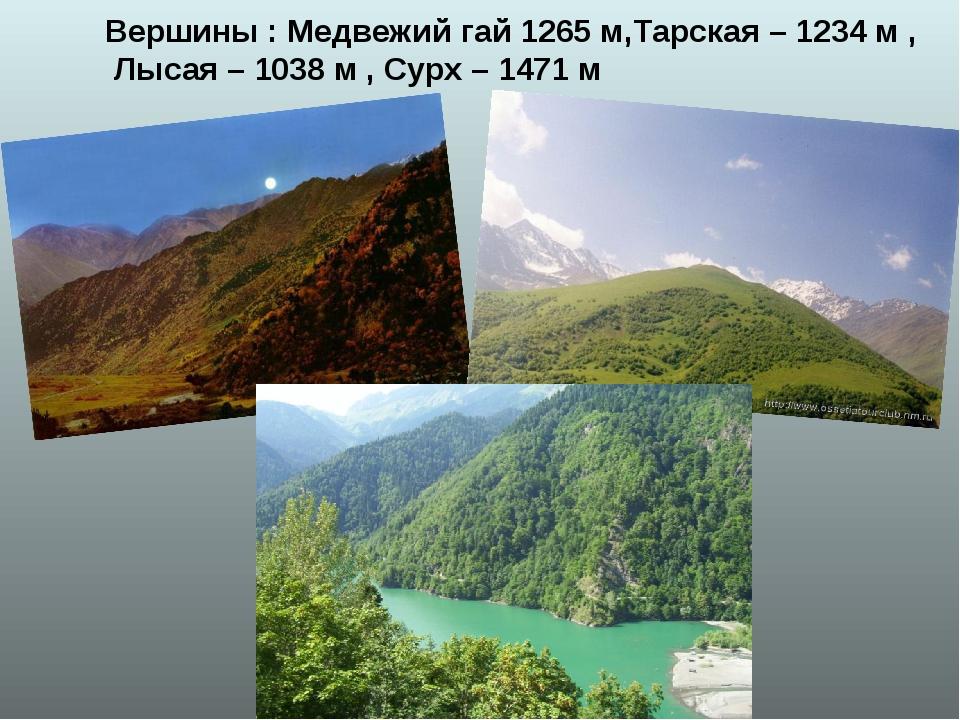 Вершины : Медвежий гай 1265 м,Тарская – 1234 м , Лысая – 1038 м , Сурх – 1471 м