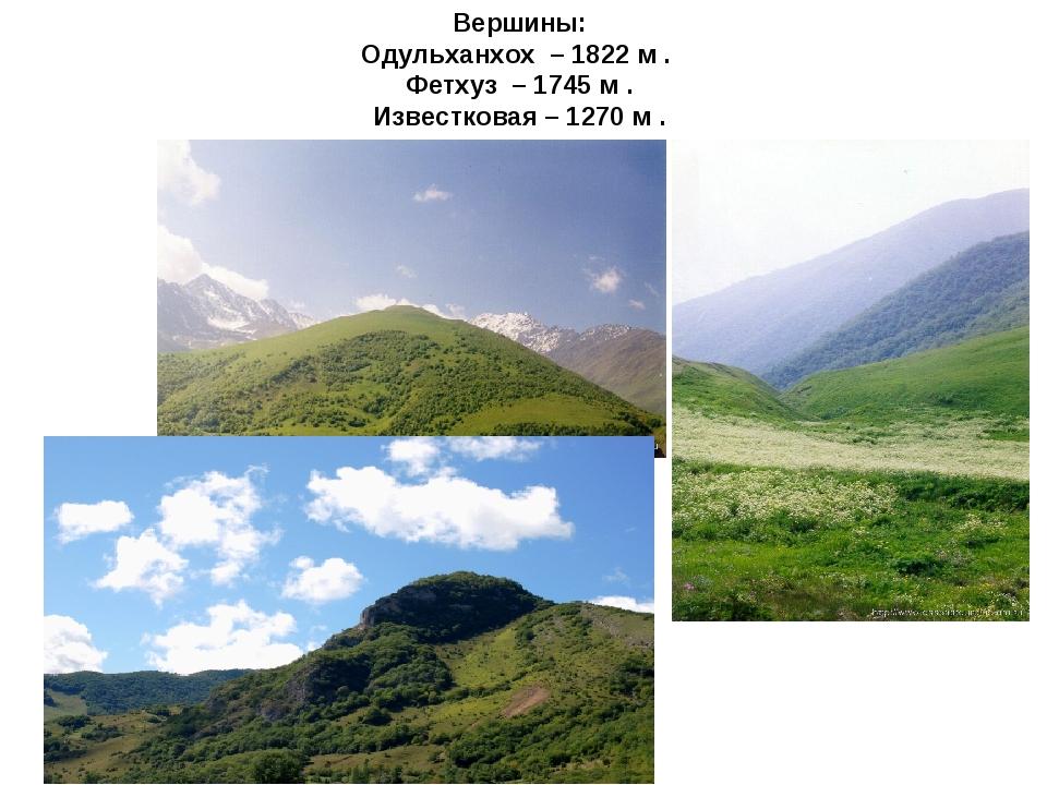 Вершины: Одульханхох – 1822 м . Фетхуз – 1745 м . Известковая – 1270 м .