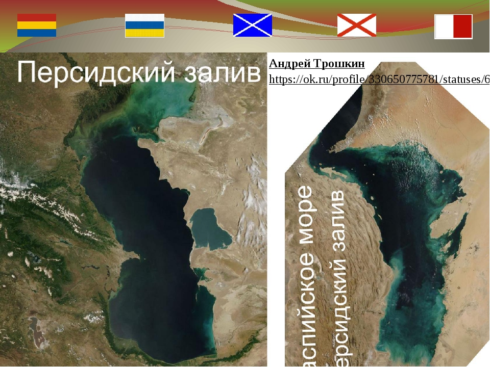 Андрей Трошкин https://ok.ru/profile/330650775781/statuses/69356779080677