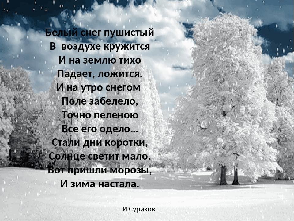 стихи много снега посадки