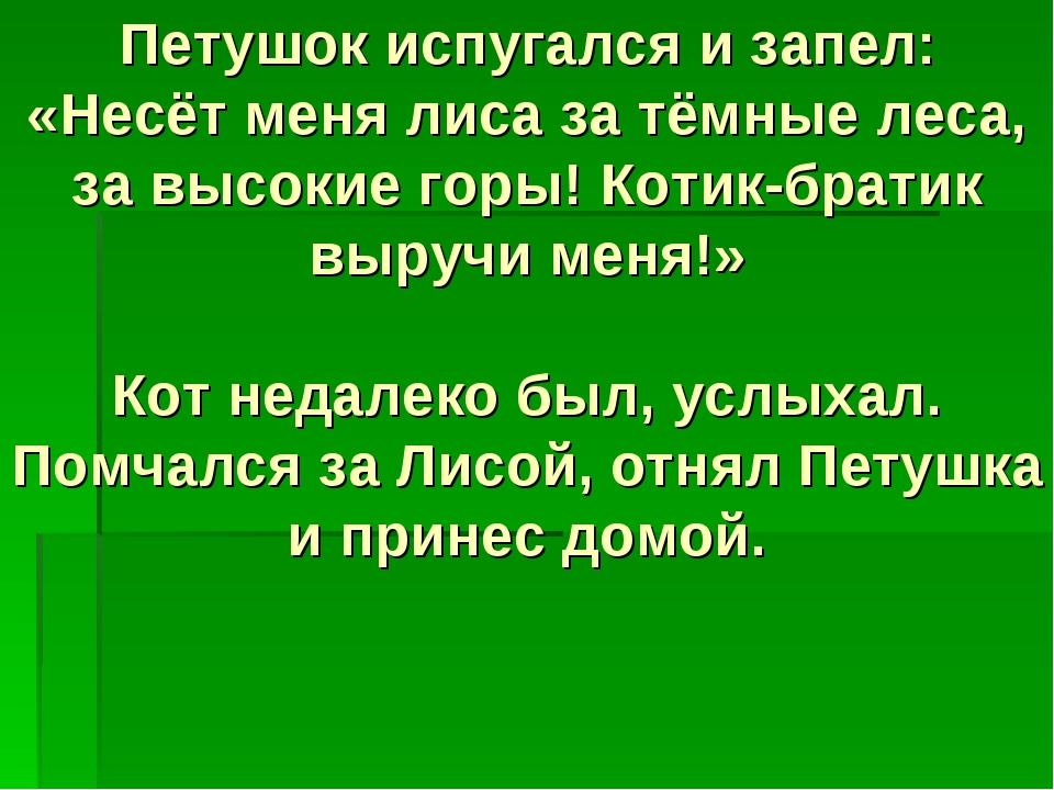 Петушок испугался и запел: «Несёт меня лиса за тёмные леса, за высокие горы!...