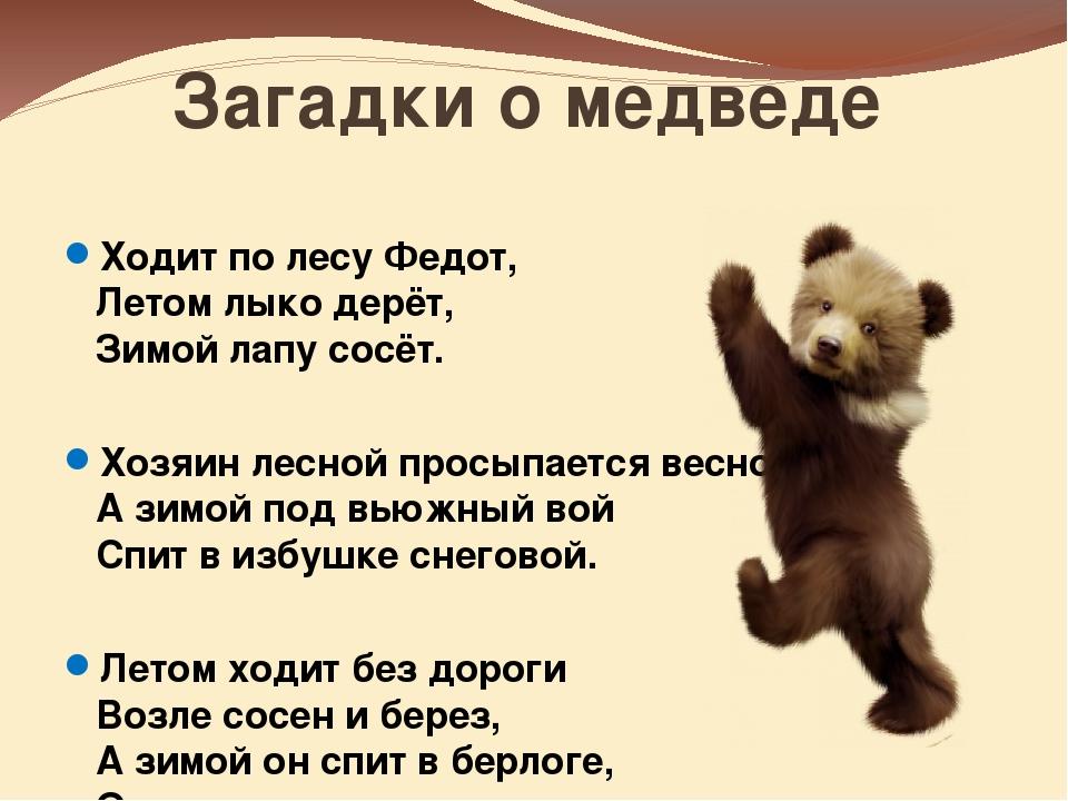 Загадки про медведя в картинках