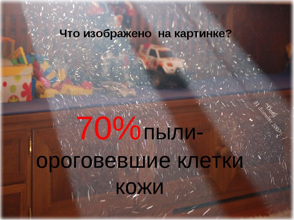 Что изображено на картинке? 70% пыли- ороговевшие клетки кожи