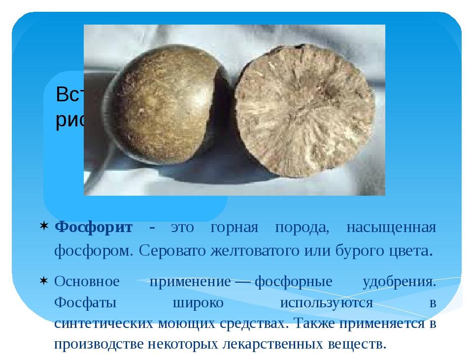 Фосфорит - это горная порода, насыщенная фосфором. Серовато желтоватого или б...