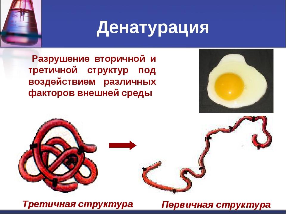 Разрушение вторичной и третичной структур под воздействием различных факторо...