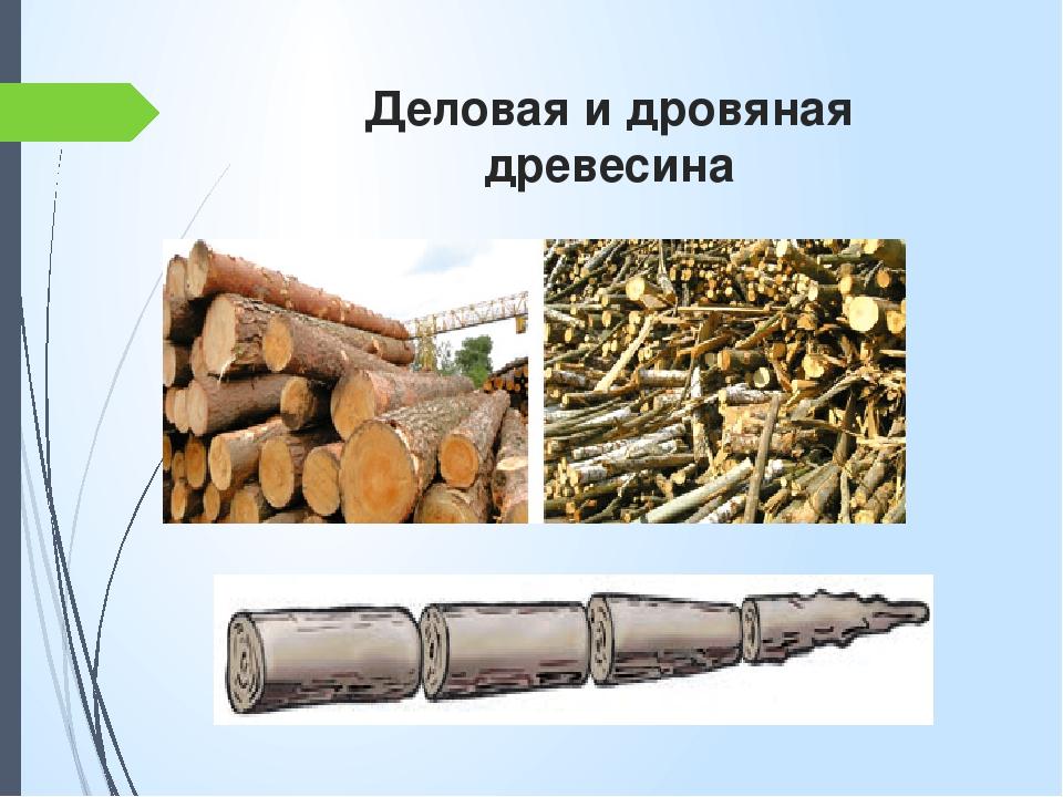 Деловая и дровяная древесина