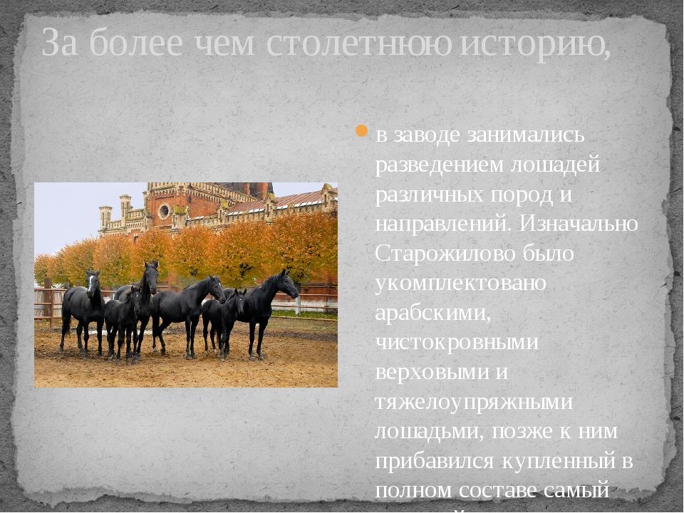 За более чем столетнюю историю, в заводе занимались разведением лошадей разли...
