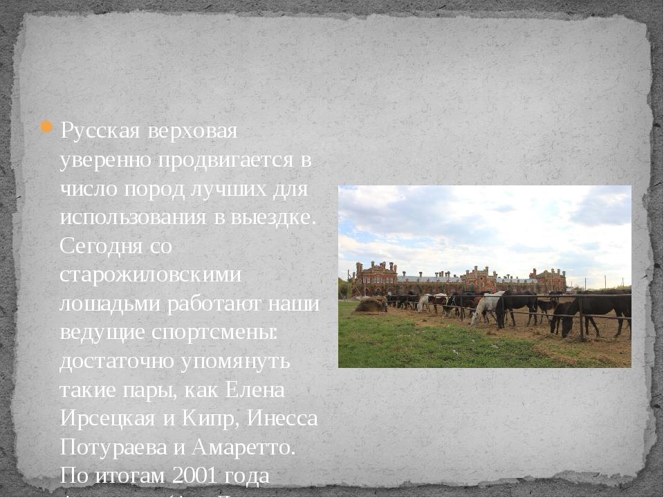 Русская верховая уверенно продвигается в число пород лучших для использовани...