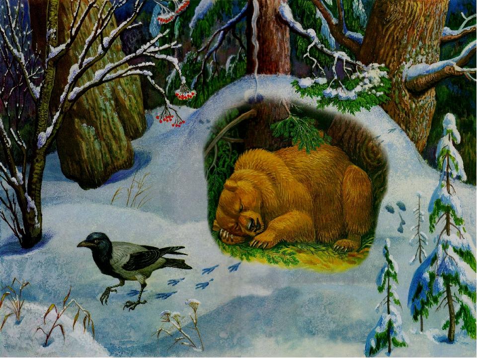 картинки спящих животных зимой последствий для