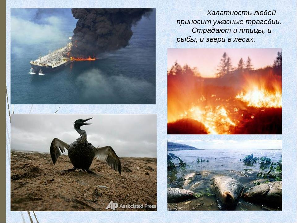 Халатность людей приносит ужасные трагедии.Страдают и птицы, и рыбы, и зве...