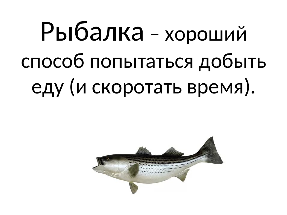 Рыбалка – хороший способ попытаться добыть еду (и скоротать время).