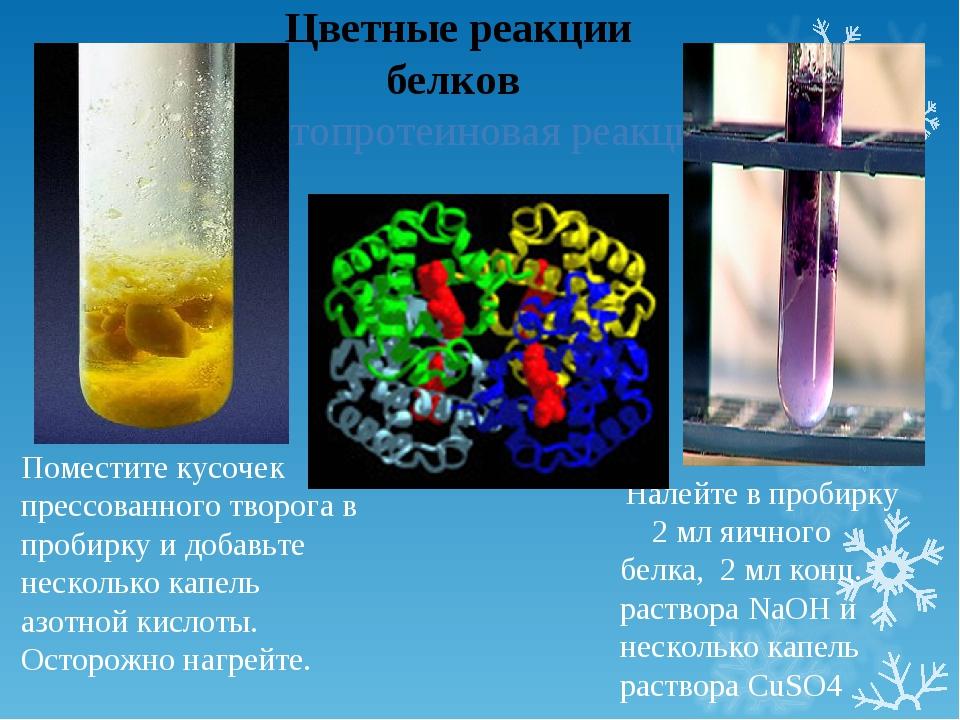 Цветные реакции белков Ксантопротеиновая реакция Поместите кусочек прессован...