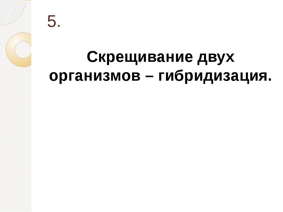 5. Скрещивание двух организмов – гибридизация.