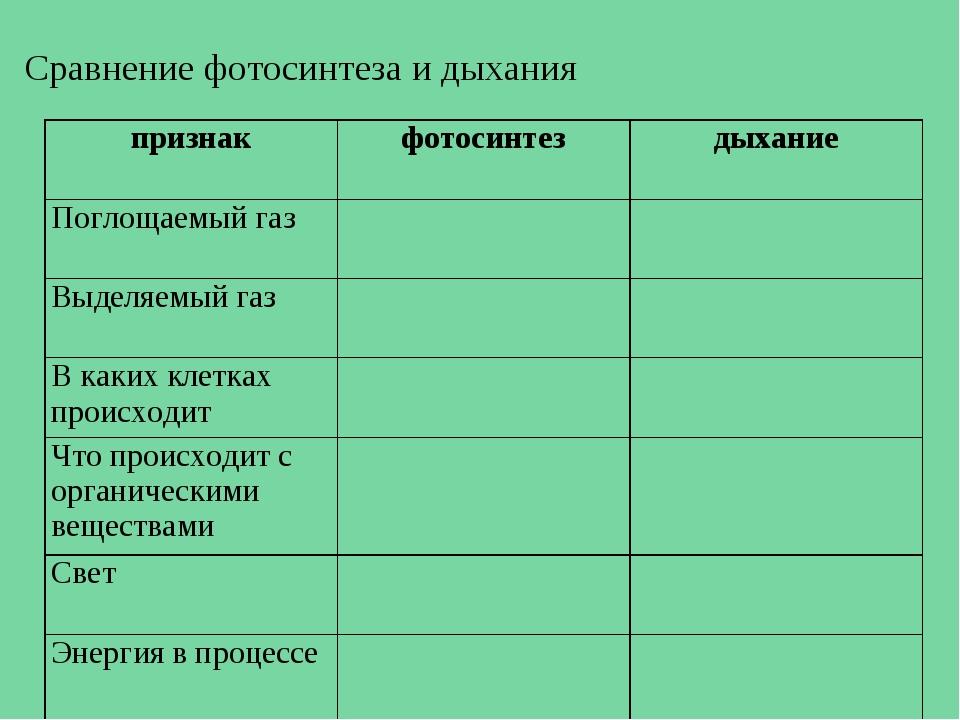 причиной смерти что относится в дыханию и фотосинтезу российский православный журнал