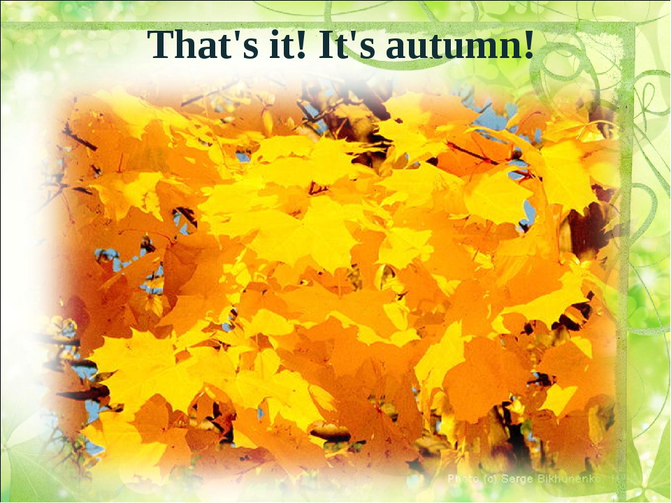 That's it! It's autumn!