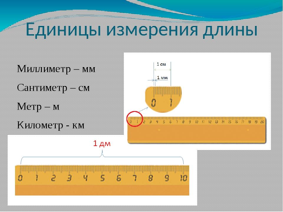 Сантиметр дециметр в картинках