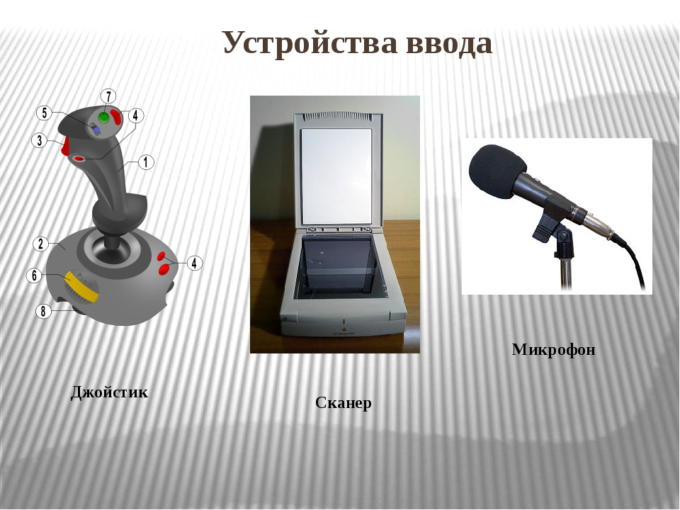 Устройства ввода Джойстик Сканер Микрофон
