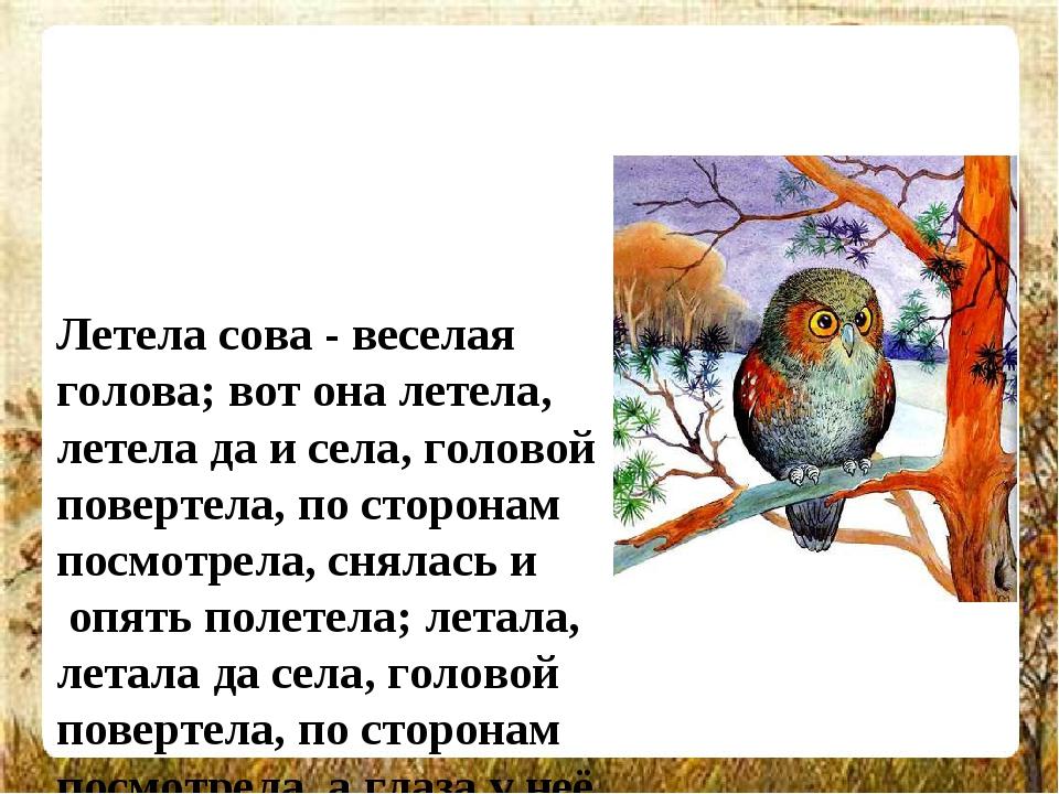 Летела сова - веселая голова; вот она летела, летела да и села, головой повер...