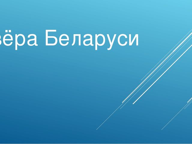 Озёра Беларуси Синеокая Беларусь
