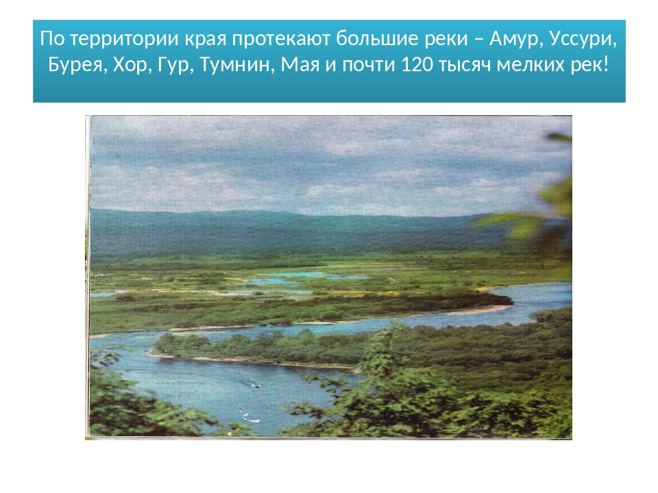 По территории края протекают большие реки – Амур, Уссури, Бурея, Хор, Гур, Ту...