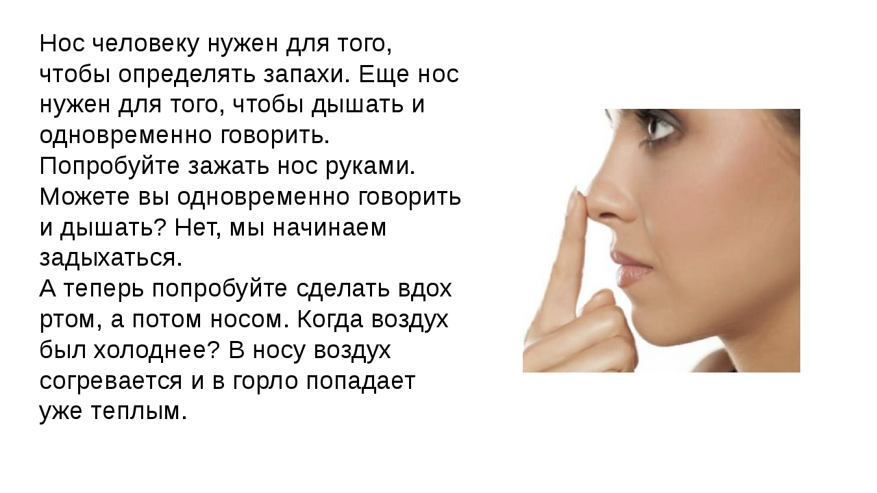 зачем человеку нос картинки над ухом