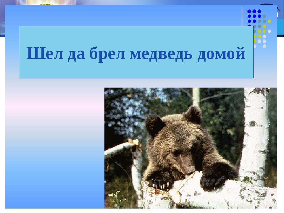 Шел да брел медведь домой LOGO