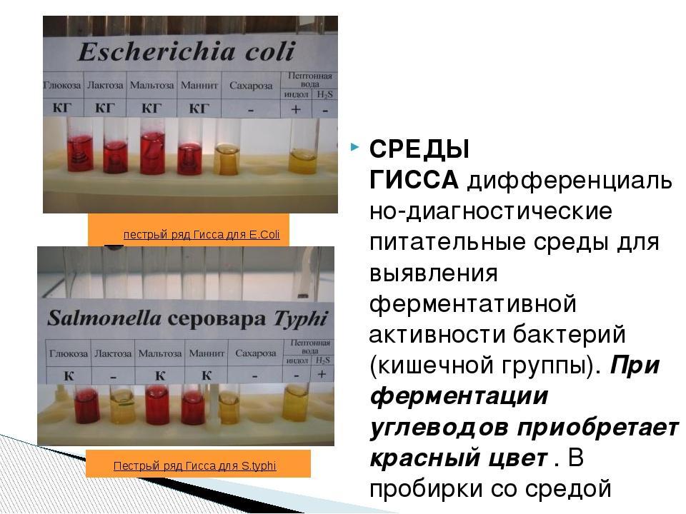 пестрый ряд Гисса для E.Coli СРЕДЫ ГИССАдифференциально-диагностические пи...