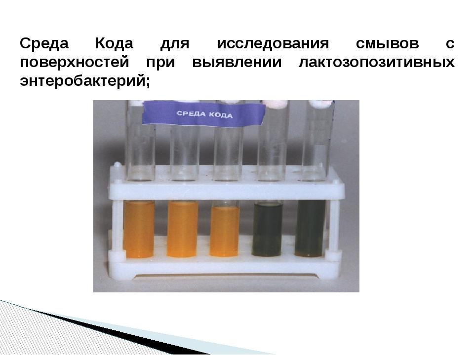 Среда Кода для исследования смывов с поверхностей при выявлении лактозопозит...