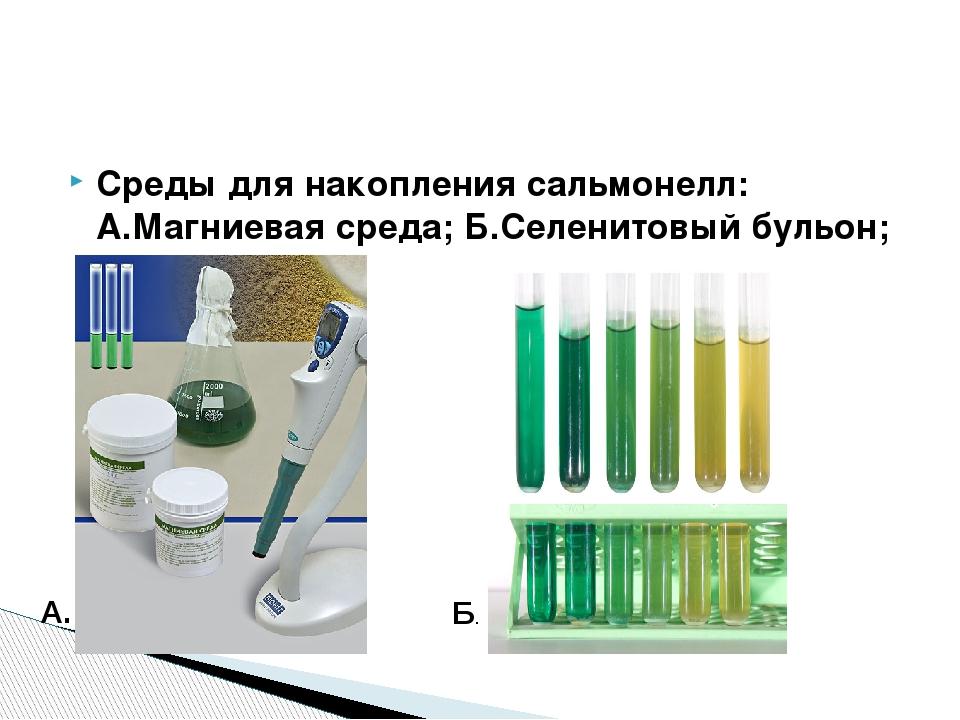 Среды для накопления сальмонелл: А.Магниевая среда; Б.Селенитовый бульон; А....