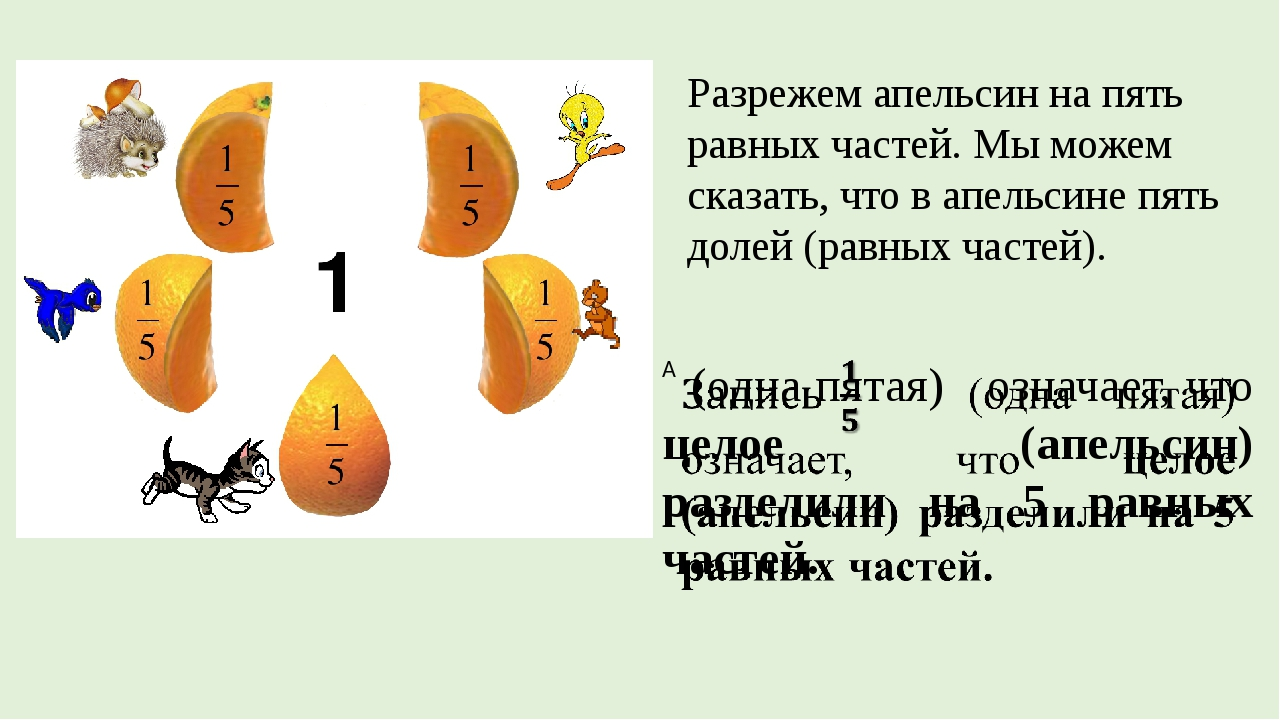 Разрежем апельсин на пять равных частей. Мы можем сказать, что в апельсине пя...