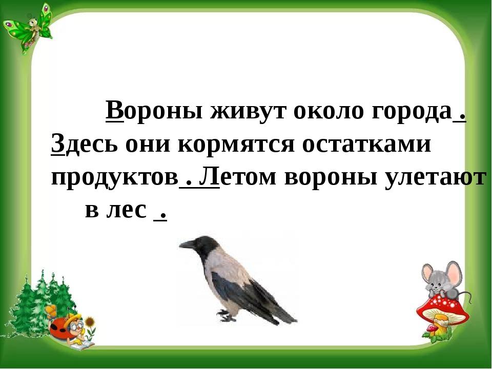 Вороны живут около города . Здесь они кормятся остатками продуктов . Летом в...