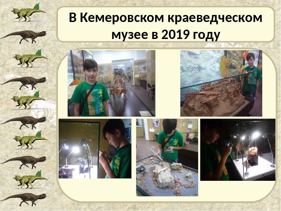 В Кемеровском краеведческом музее в 2019 году