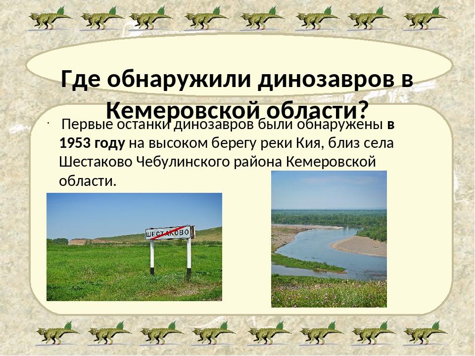 Где обнаружили динозавров в Кемеровской области? Первые останки динозавров бы...