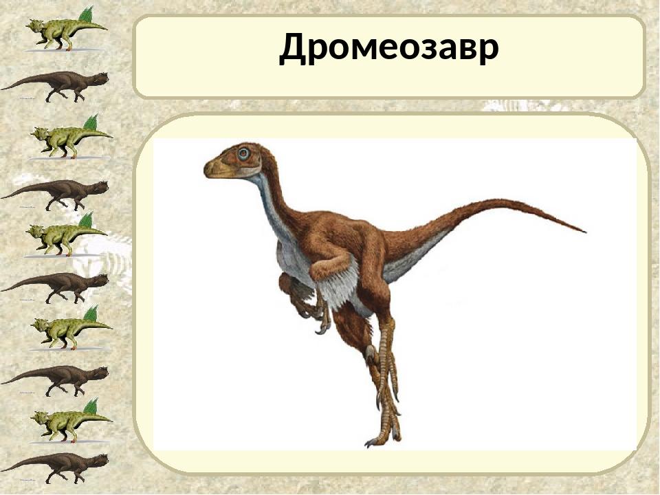 Дромеозавр